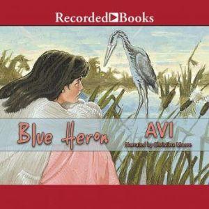 Blue Heron, Avi