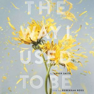 The Way I Used to Be, Amber Smith