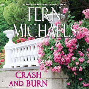 Crash and Burn, Fern Michaels